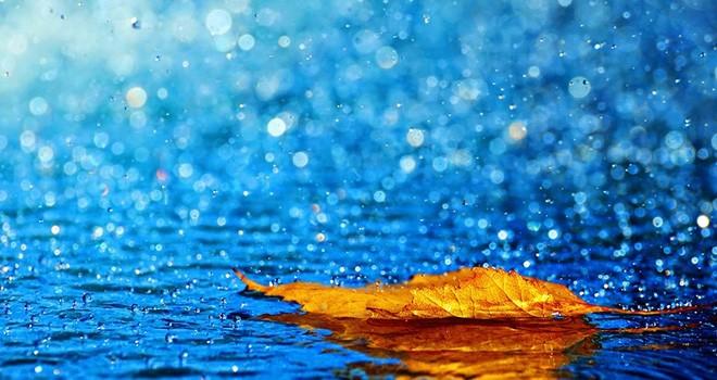 Yeşilırmak'a 14 Kg yağış düştü