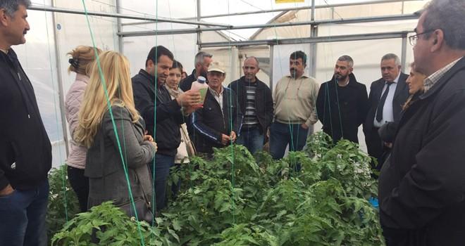 Tarım Dairesi, üreticileri bilgilendirmek için eğitim düzenledi