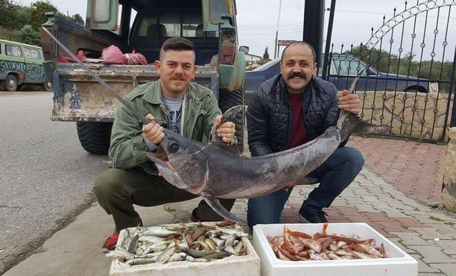 Balıkçılar, 21 kiloluk kılıç balığı yakaladı