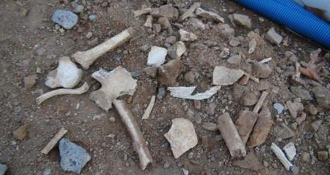 Civisil'de kemik kalıntıları bulundu