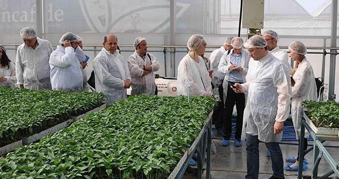 Rus tarım denetçileri bugün Türkiye'ye geliyor