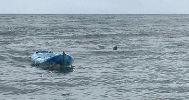 Genç kızı köpek balığı saldırısından babası kurtardı