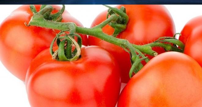 Yerli domateste limit üstü kalıntıya rastlandı