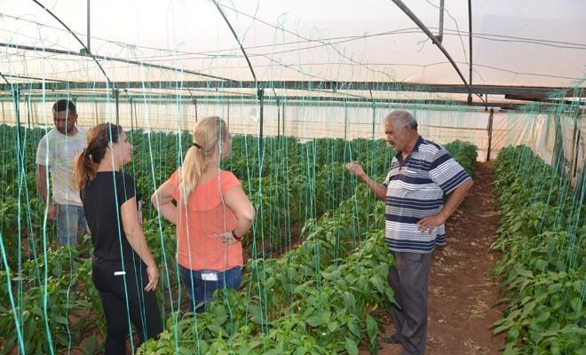 İthalatçılardan, TC Gıda ve Tarım Bakanlığı'nın analiz raporu isteniyor