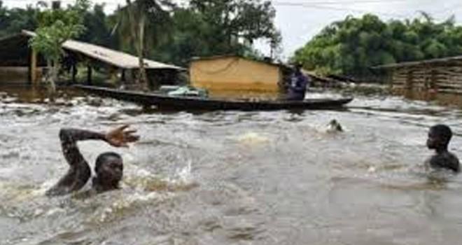 Nijerya'da sel felaketi…