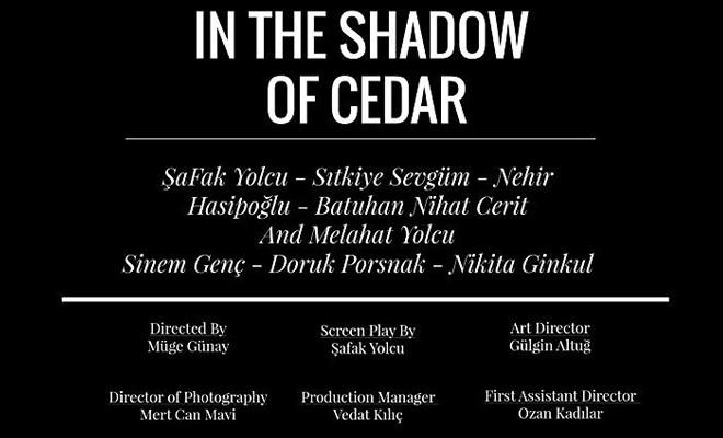 Sedirin Gölgesinde, Cardiff Uluslararası Film Festivali'ne seçildi