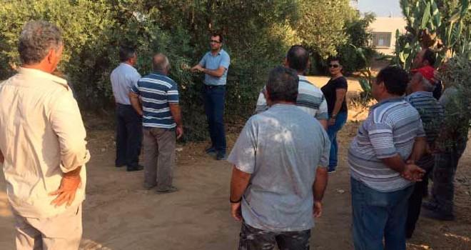 Tarım Dairesi eğitim çalışmaları Ozanköy'de devam edecek
