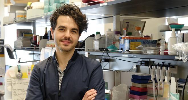 Kıbrıslı Türk bilim insanından üç boyutlu insan beyin modelleri