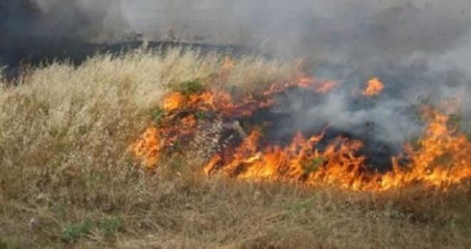 Boğazköy'de yangın