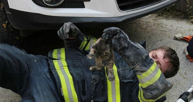 Motora giren yavru kediyi itfaiye ekipleri kurtardı