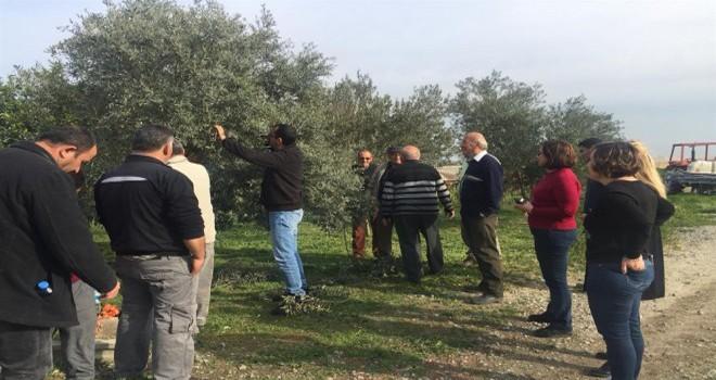 Tarım Dairesi eğitim çalışmalarına Düzova köyü ile devam ediyor