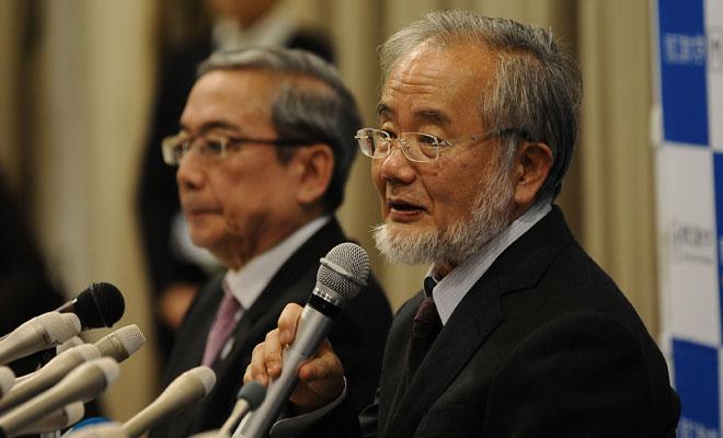 Nobel Tıp Ödülü, Japon bilim adamı Yoshinori Ohsumi'ye verildi.