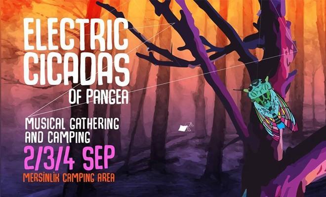 """""""Electric Cicadas"""" 2 Eylül'de başlıyor"""