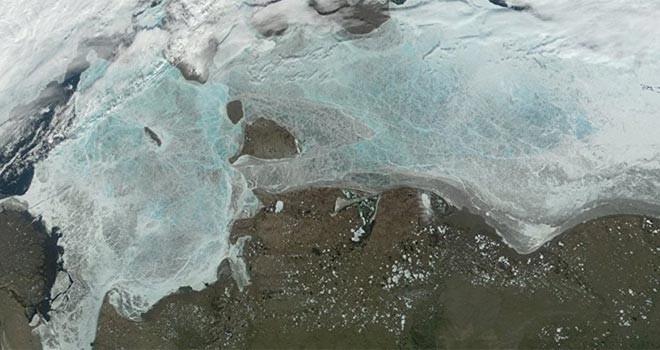 ABD sahilinde İsrail büyüklüğünde dev bir 'ölü bölge' saptandı
