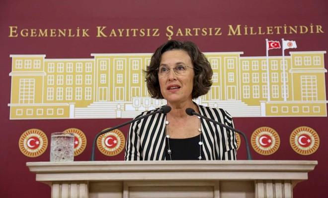 HDP'li Kerestecioğlu, Akıncı'nın mesajını TBMM'de okudu