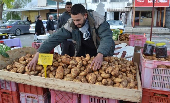 Patates pazara zamlı geldi!