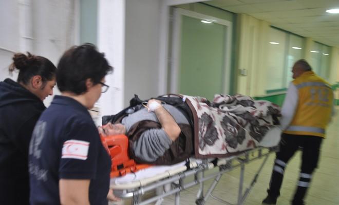 Ayrelli toplarken yaralandı