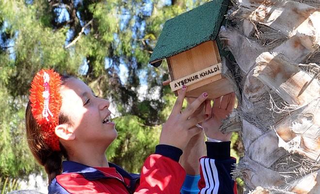 Özel çocuklar, kuşlar için ağaçlara yuva yerleştirdi