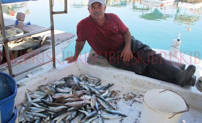 Güneye balık satışı, kuzeyi pahalılaştırdı