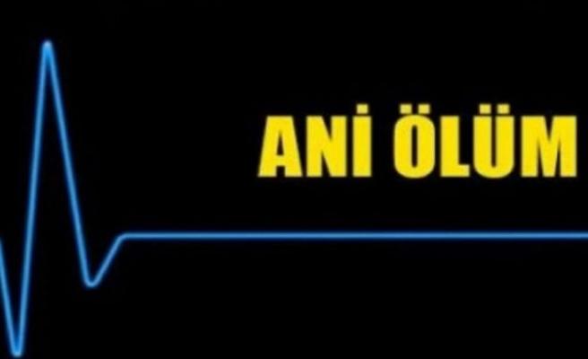 Vadili ve Girne'de iki ani ölüm