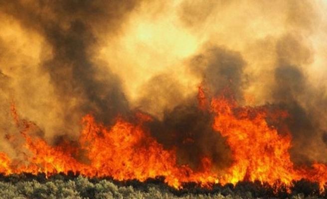 Platres'de yangın