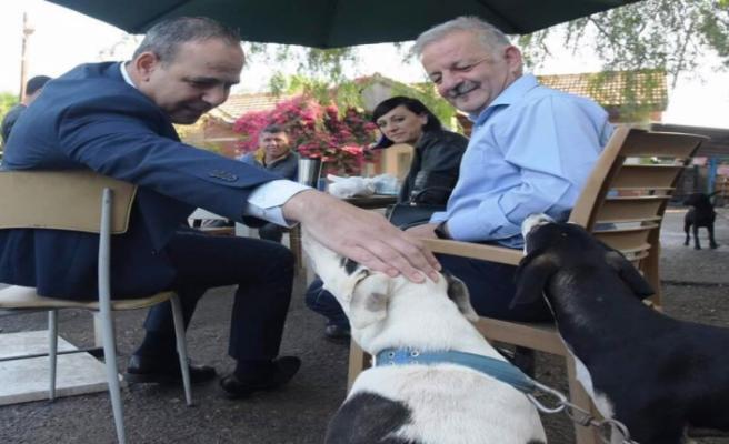 LTB, Hayvan Barınağı'ndaki dostlara güvenli ve sağlıklı bir ortam sunuyor