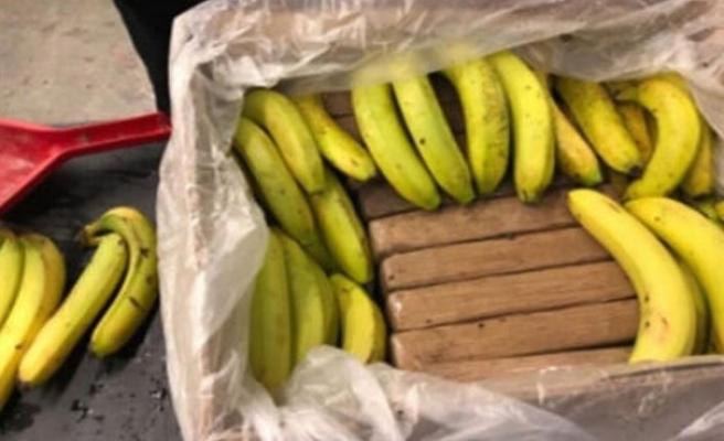 Kolombiya'dan gelen kokain dolu muzlar yanlışlıkla Kanada'daki marketlere gitti