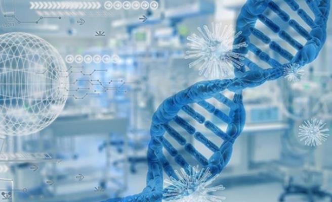 Araştırmaya göre, kovid-19'a karşı geliştirilen bağışıklık hücreleri varyantlarına karşı da etkili oluyor
