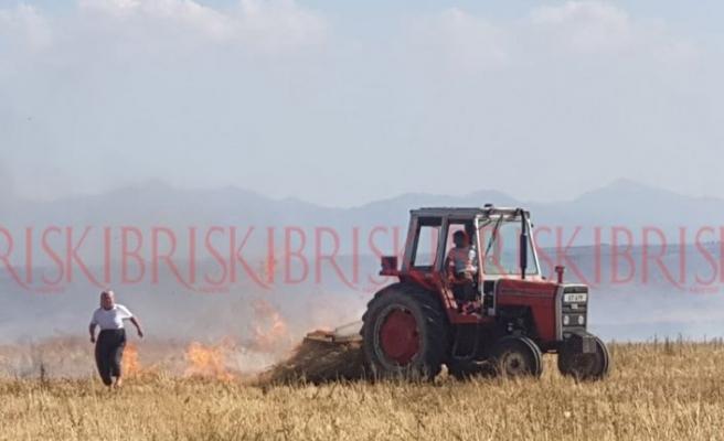 Arpa, anız, balya vezeytin ağaçları yandı