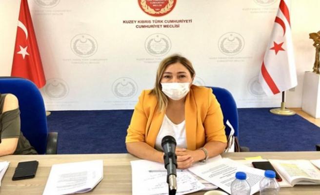 Cumhuriyet Meclisi'nin 1995 Beşparmak dağları yangınına ilişkin araştırma komitesi toplandı