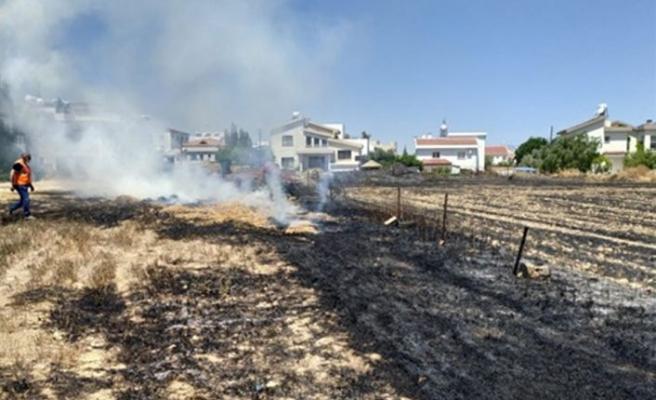 Kermiya'da arazi yangını12 dönüm biçilmemiş arpa yandı