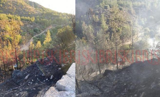 27 ağaç yanarak kül oldu