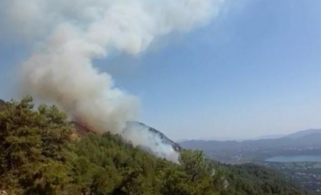 Muğla'nın Köyceğiz ilçesinde de yangın çıktı