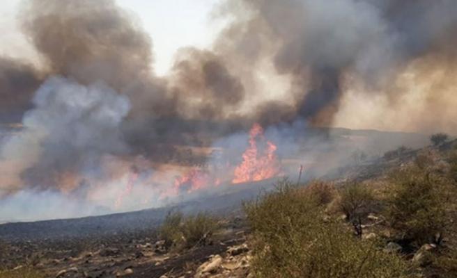 Gazimağusa'nın Arıdamı köyünün batı kısmında yangın çıktı