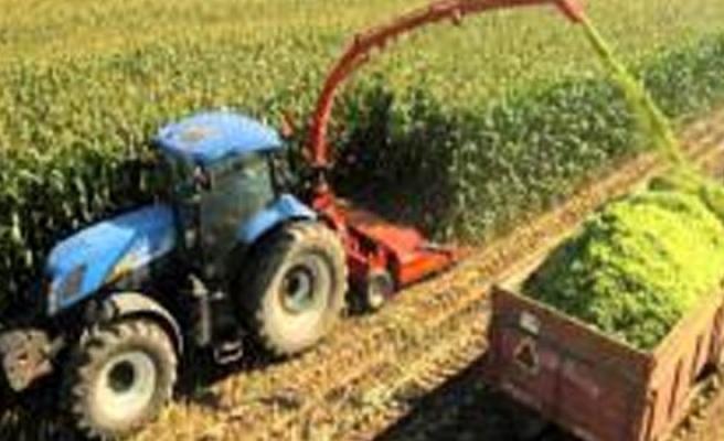 Devlet Üretme Çiftlikleri Dairesi: Üretilen silajların satışı başlamıştır