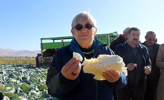 Canan Karatay'dan 'lahana turşusu' tavsiyesi