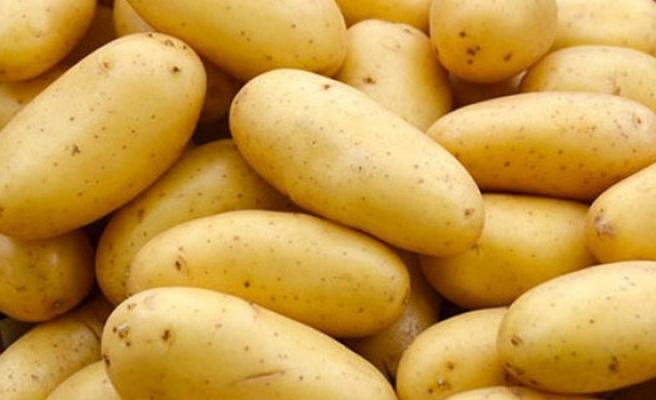 İthal patatesler geldi