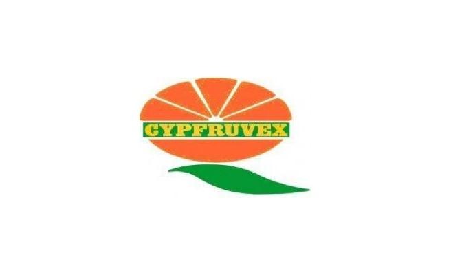 Cypfruvex'te yetkili sendika BASS