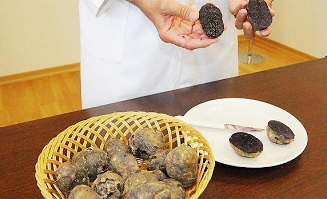 Türkiye'de ilk defa 'mor patates' üretildi