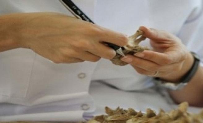 Kıbrıslı Rum'a ait kemikler bulundu
