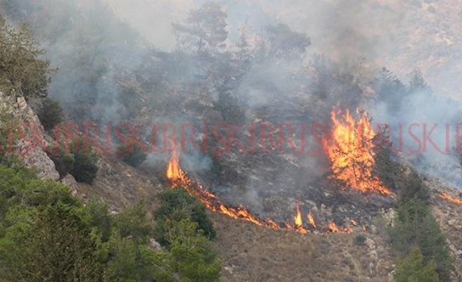 Yangınların ana nedeni duyarsızlık