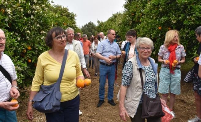 Turistler, portakal hasadına katıldı