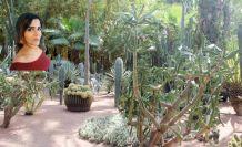 Majorelle bahçesi