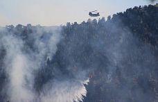 Türkiye'de son 8 günde çıkan 174 yangının 160'ı kontrol alındı, 14'ü devam ediyor