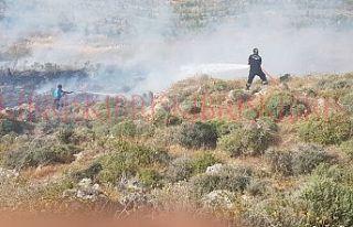 Yangın, bin 500 dönüm araziye yayıldı