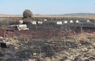 Eski Rum Mezarlığı tutuştu