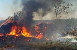 Saman öğütme makinesi yangına neden oldu