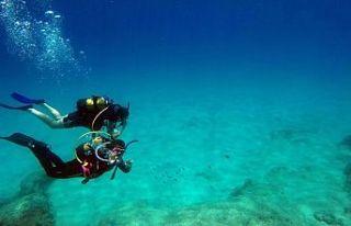 Akdeniz tropikleşiyor, zehirli balıklar çoğalıyor