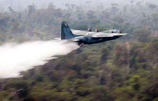 Amazonlar'da yangın yoğunluğu rekor düzeye...