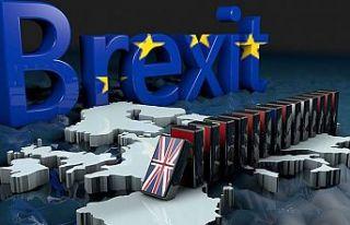 Kritik Brexit oylamasını muhalefet kazandı
